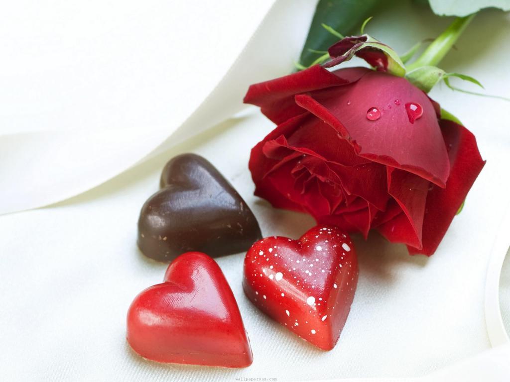 Ý nghĩa của hoa hồng đỏ là biểu tượng của tình yêu lãng mạn. Ảnh minh họa.
