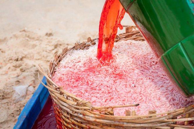 Hãi hùng cảnh nhuộm, ướp ruốc đỏ bằng hóa chất 1