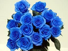 Hình ảnh Vì sao hoa hồng xanh là biểu tượng của tình yêu bất diệt? số 2