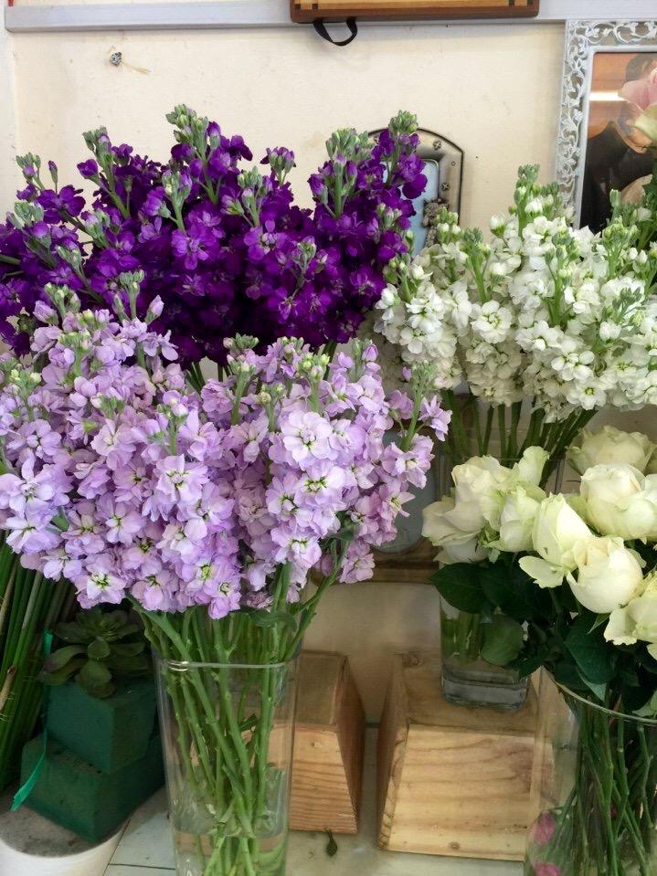 Hình ảnh Bí quyết chọn hoa tươi và giữ hoa khỏe mạnh số 3