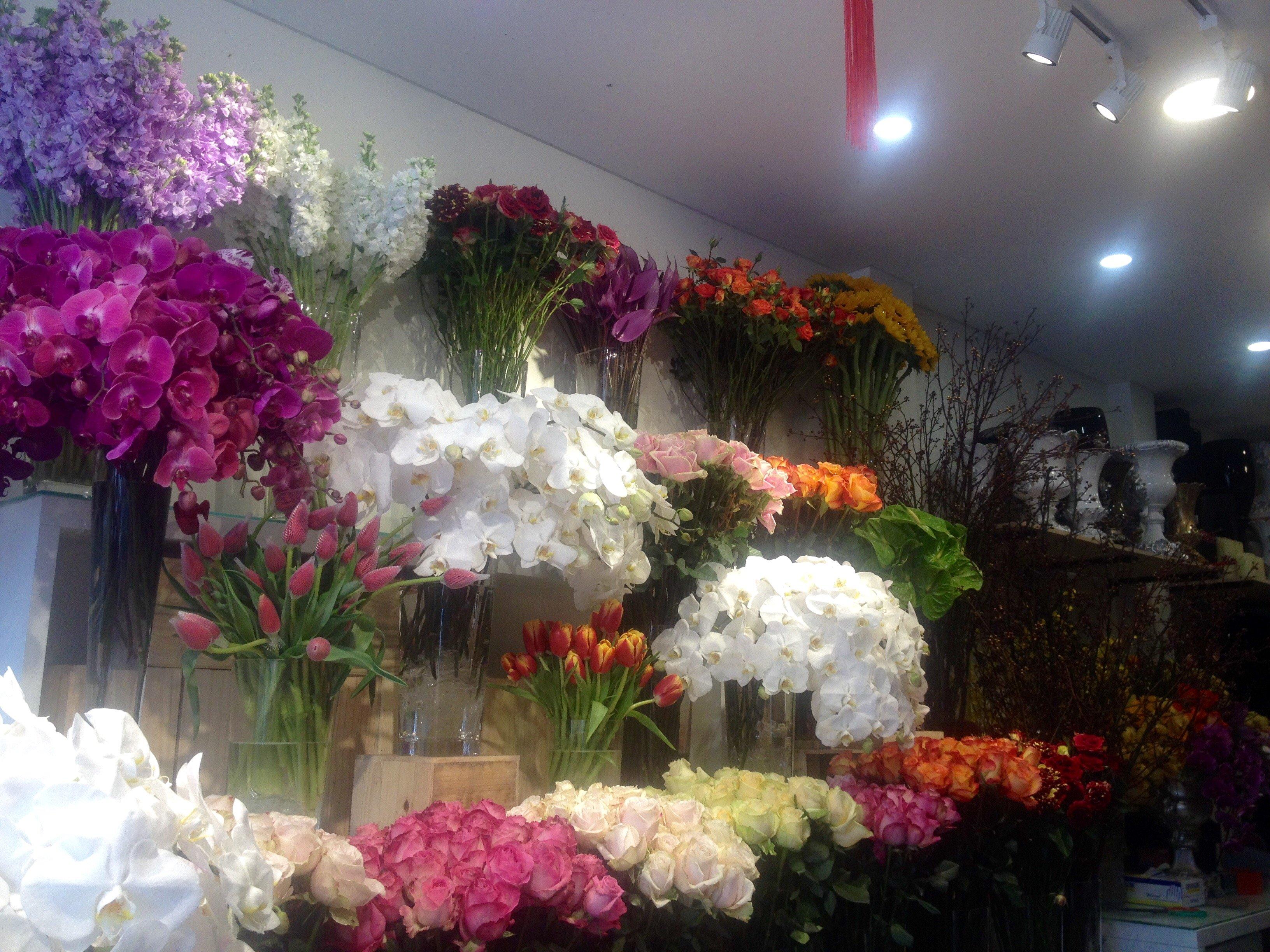 Hình ảnh Bí quyết chọn hoa tươi và giữ hoa khỏe mạnh số 4