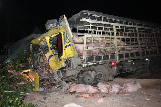 Xe tải gặp tai nạn, hàng chục con heo trên xe bị chết 1