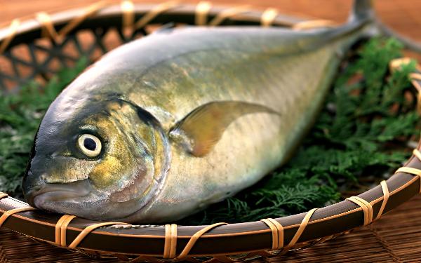 Đời sống - Cách ăn cá ít bị nhiễm độc nhất