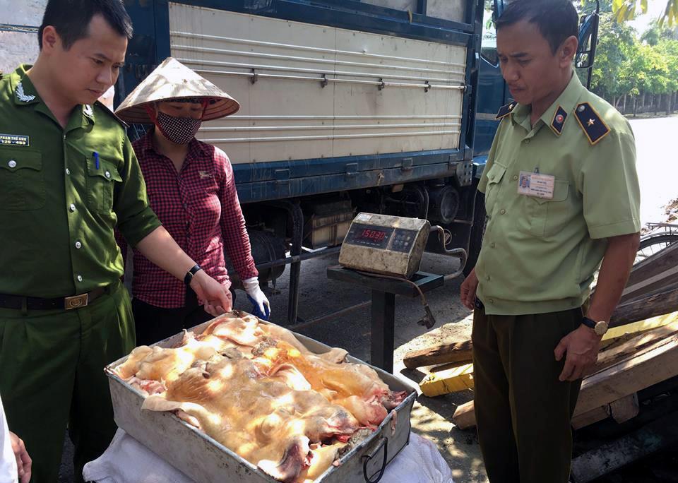 Tiêu hủy 3,7 tấn bò không nguồn gốc tại Hà Nội 1