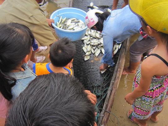 Rối thông tin, hướng dẫn vụ cá chết hàng loạt ở miền Trung 1