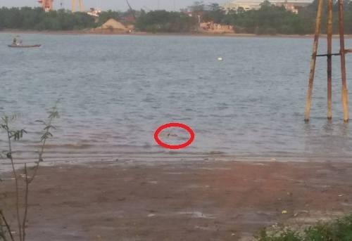 Phát hiện thi thể người đàn ông trôi trên sông Lam 1