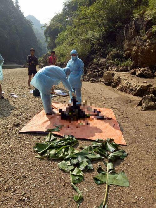 Phát hiện thi thể phụ nữ đang phân hủy dưới chân núi 1