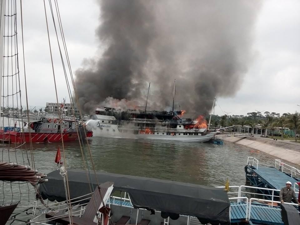 Tàu du lịch bốc cháy dữ dội ở cảng Tuần Châu, du khách nhảy xuống biển 2