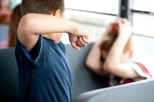 Con bắt nạt bạn ở trường Mỹ, bố mẹ bị phạt tiền 1