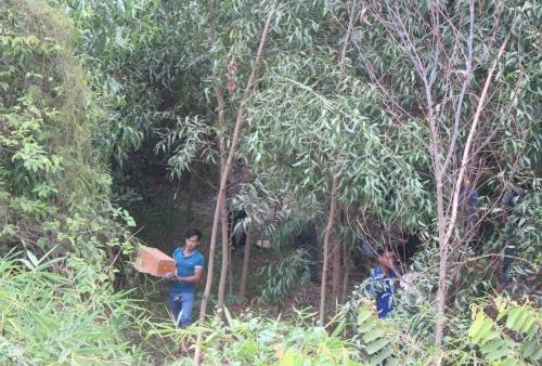 Vụ ngôi mộ bất thường giữa rừng tràm: Hàng trăm người hiếu kỳ 'vây' hiện trường 2