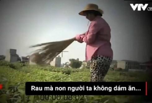 Vụ 'Cây chổi quét rau': Phạt VTV 50 triệu đồng, buộc phải cải chính xin lỗi 1