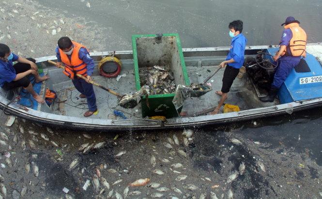Cận cảnh kênh Nhiêu Lộc đen ngòm, 'sôi ùng ục' khiến gần trăm tấn cá chết 5