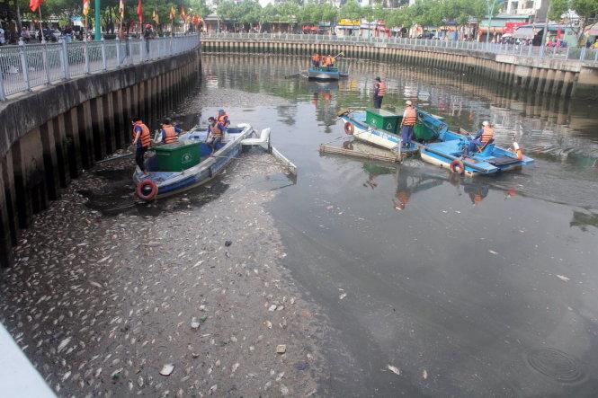 Cận cảnh kênh Nhiêu Lộc đen ngòm, 'sôi ùng ục' khiến gần trăm tấn cá chết 6