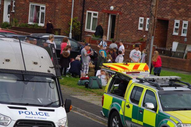 Chó dữ tấn công điên cuồng 14 trẻ em ở Anh 1