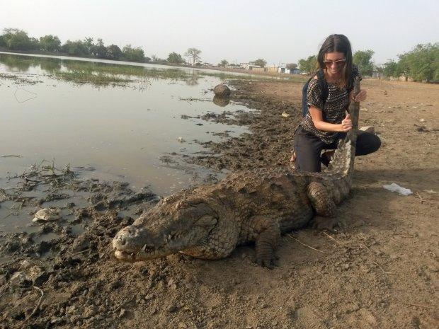 Nữ du khách 'âu yếm' cá sấu chụp ảnh 2