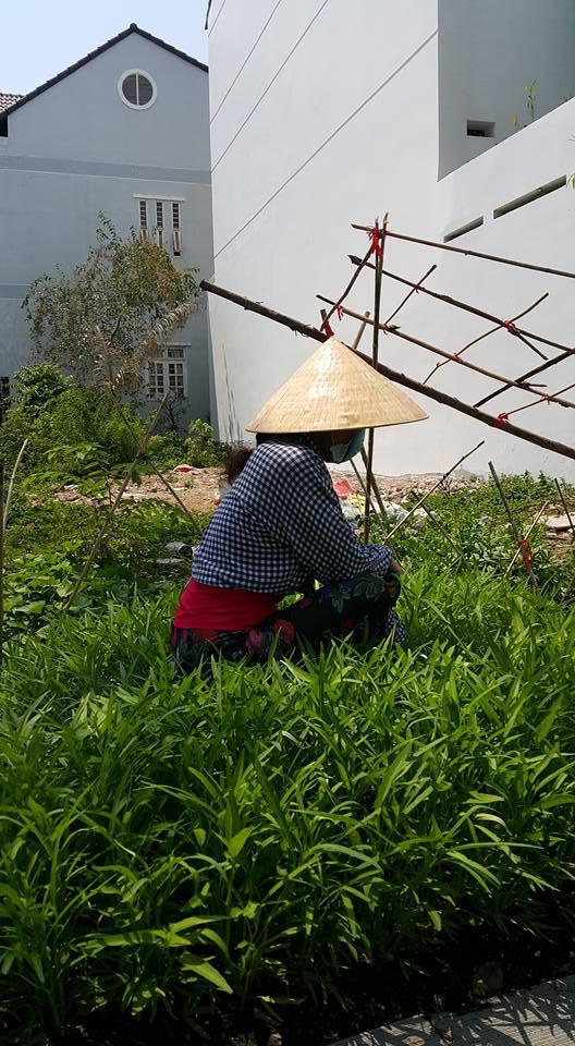Cuộc sống giản dị của bố mẹ Hồ Ngọc Hà trong biệt thự triệu đô 13