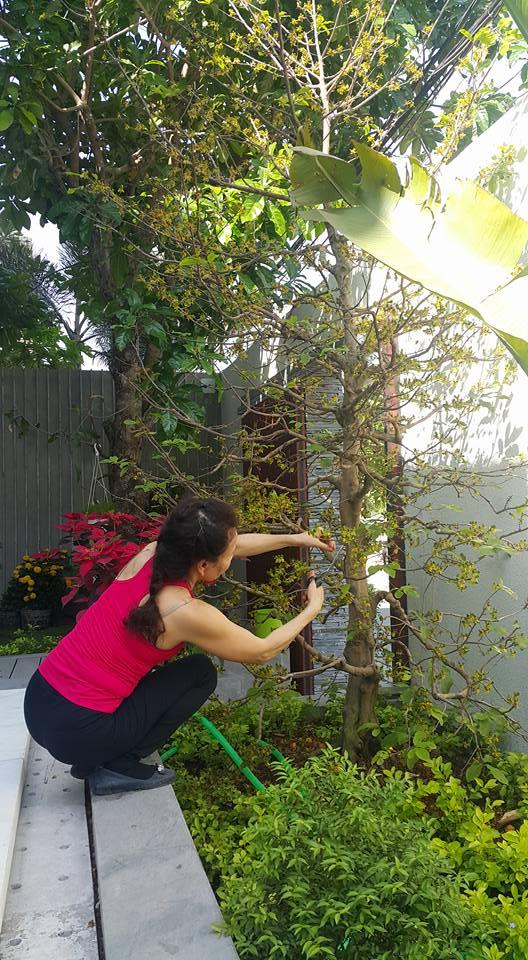 Cuộc sống giản dị của bố mẹ Hồ Ngọc Hà trong biệt thự triệu đô 11