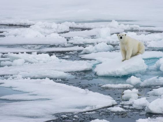 Sau 100.000 năm, Bắc Cực lần đầu tiên có thể tan chảy hoàn toàn 2
