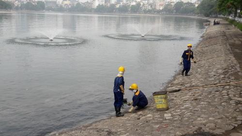 Cận cảnh hồ Hoàng Cầu sau 'giải cứu' cá chết trắng 3