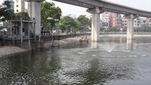 Cận cảnh hồ Hoàng Cầu sau 'giải cứu' cá chết trắng 4