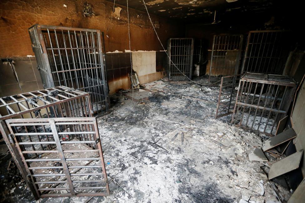 Hình ảnh Falluja hoang tàn sau khi IS bị truy quét 2