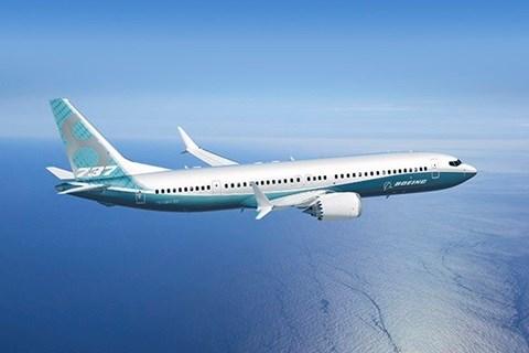 Mẹ bị cấm bay vì con trai liên tục nhổ nước bọt vào nhiều hành khách 5