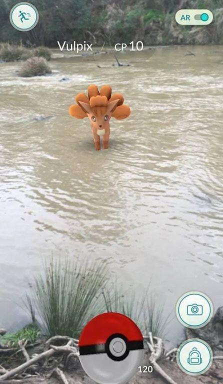 Giới trẻ điên cuồng với cơn sốt Pokemon Go 3