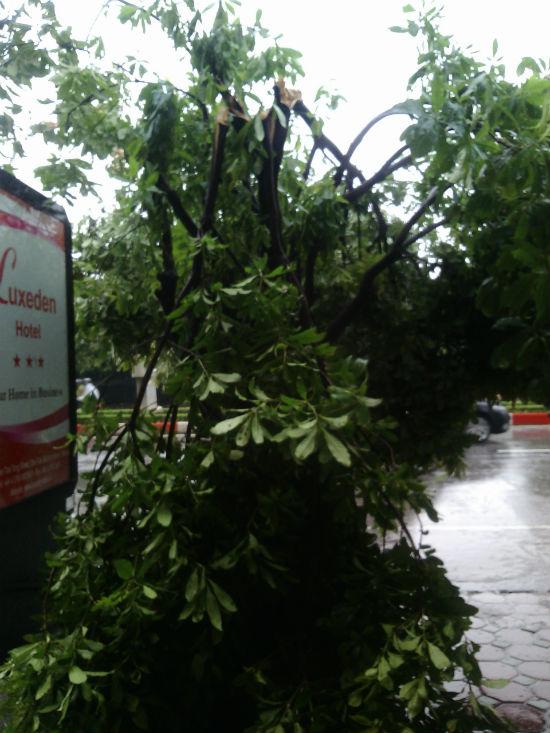 Hà Nội: Phố nhỏ ngổn ngang sau trận bão đầu mùa 8