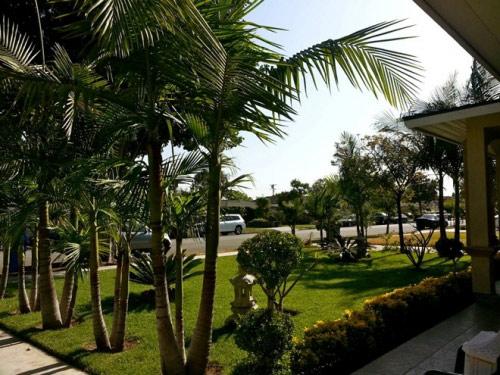 Biệt thự nhà vườn triệu đô của Thu Phương, Quang Lê trên đất Mỹ 2