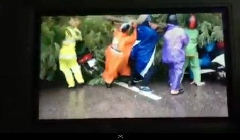 Video: Dân Hà Nội cùng nhau nâng cây đổ, cứu người bị nạn mắc kẹt 1