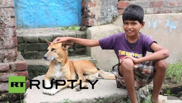 Đời sống - Kỳ lạ bé trai 10 tuổi nghiện bú sữa chó ở Ấn Độ