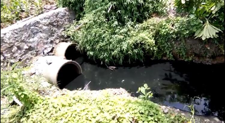 Gần 200 hộ dân kêu cứu vì bị ô nhiễm môit rường sống 2