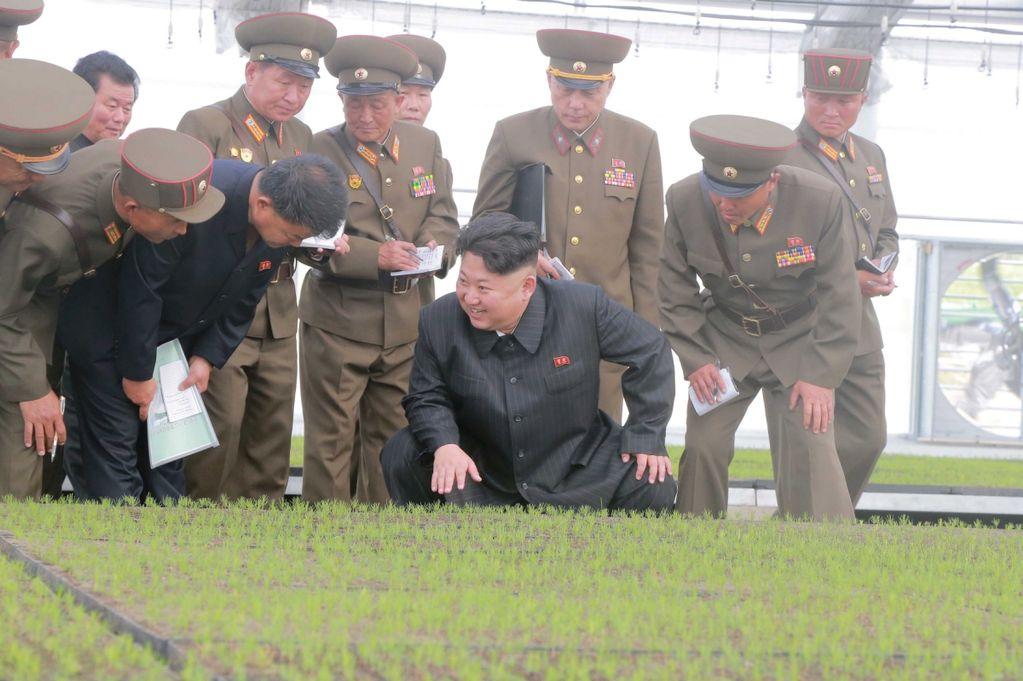 Triều Tiên xử tử 60 người, khôi phục lực lượng truy quét người thất nghiệp 2