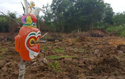 Nhóm thợ săn đặt bẫy mới để bắt đàn trâu hoang ở Quảng Trị 2