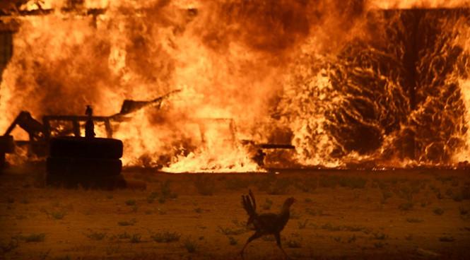 Cháy rừng Nam California, gần 100.000 người phải sơ tán 1