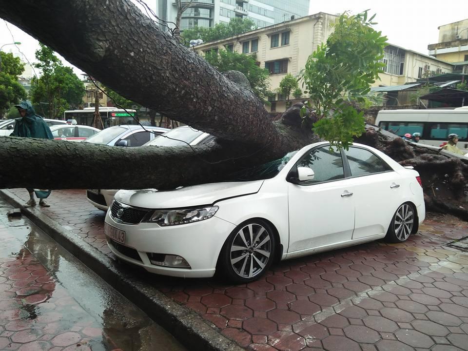 Tin tức mới nhất bão số 3- bão Thần sét đổ bộ Hải Phòng-Thái Bình 3
