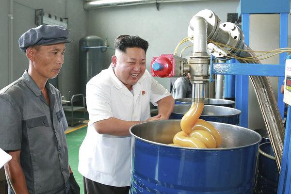 Kim Jong-Un thong thả đi thăm lợn, hái táo 5