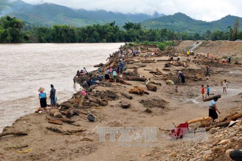 Người dân Yên Bái liều xuống dòng lũ xiết vớt gỗ 3