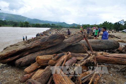 Người dân Yên Bái liều xuống dòng lũ xiết vớt gỗ 4