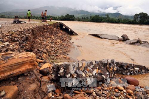 Người dân Yên Bái liều xuống dòng lũ xiết vớt gỗ 5