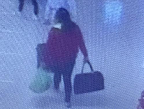Vụ thiếu nữ 17 tuổi mất tích ở sân bay Nội Bài: Cơ quan công an vào cuộc 1