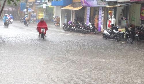 Áp thấp nhiệt đới trên biển Đông, Bắc Bộ mưa lớn 1