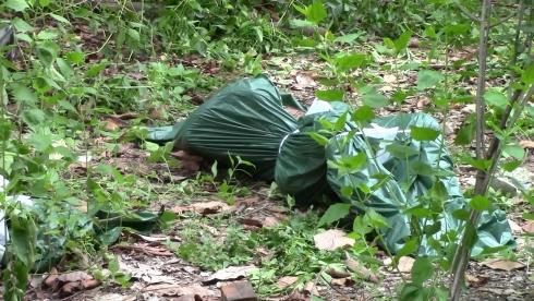 Phát hiện thi thể người đàn ông nổi trên sông 1