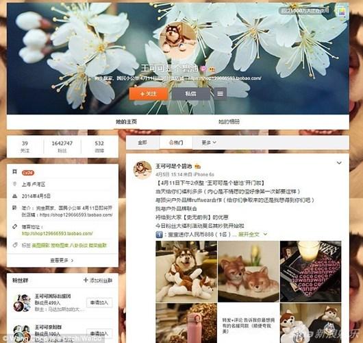 Hình ảnh Ngắm kho hàng hiệu xa xỉ dành cho thú cưng của đại gia Trung Quốc số 1
