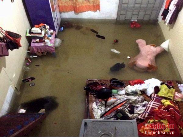 Mưa lũ miền Trung, hàng nghìn ngôi nhà bị nhấn chìm tới tận nóc 14