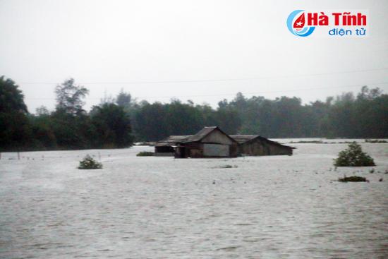 Mưa lũ miền Trung, hàng nghìn ngôi nhà bị nhấn chìm tới tận nóc 13