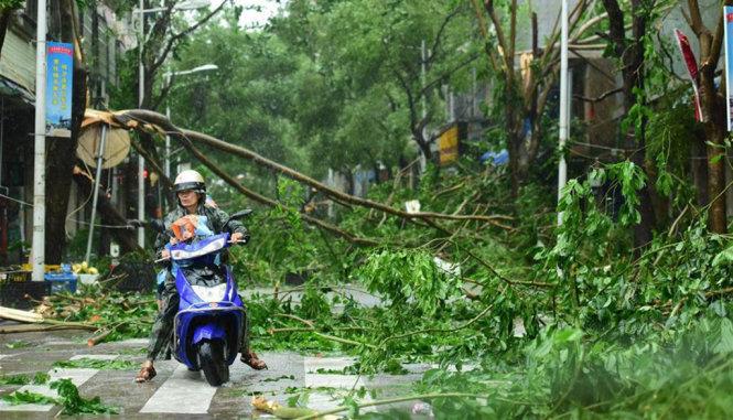 Chùm ảnh: Bão Sarika vừa càn quét đảo Hải Nam, Trung Quốc 1