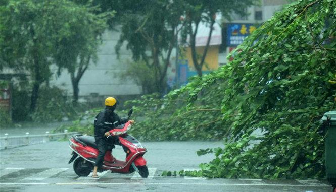 Chùm ảnh: Bão Sarika vừa càn quét đảo Hải Nam, Trung Quốc 2