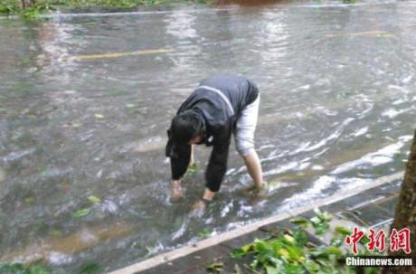 Chùm ảnh: Bão Sarika vừa càn quét đảo Hải Nam, Trung Quốc 8