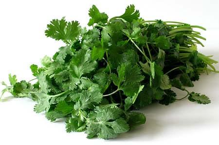 8 lợi ích của rau mùi ít người biết 4